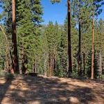 2272 Sierra House Trail, South Lake Tahoe, Ca